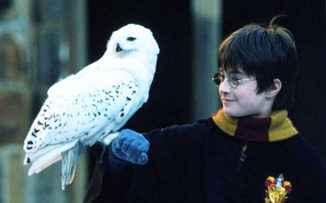 Volar, de la mano de Harry Potter