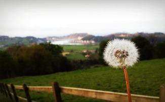 Del dolor a la esperanza: un jaque a la indiferencia
