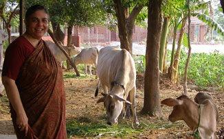"""VANDANA SHIVA: """"Las mujeres son la mayor creación que sostiene el planeta Tierra"""""""