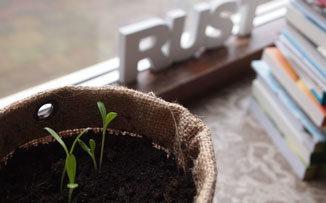 La vocación de crecer