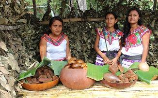 Por las mujeres de México