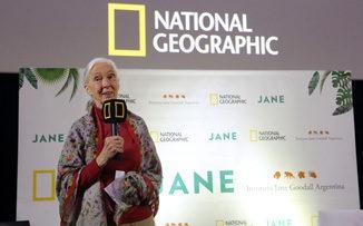 """Jane Goodall: """"Necesito que me ayuden a cuidar la Tierra"""""""