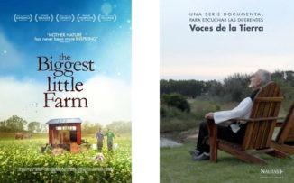 Cine para cuidar el planeta y cine para cuidar el alma, juntos en un único festival online