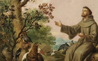 Francisco de Asís, ícono de una relación fraternal con la naturaleza