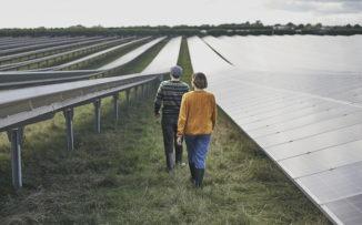 Sustentabilidad y pandemia: ¿crece la conciencia ambiental?
