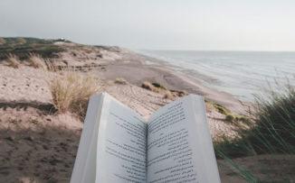 Taller de lectura de verano: una invitación a compartir el amor por los libros
