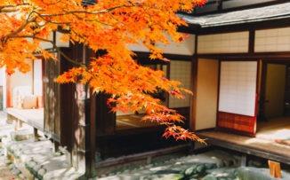Japón, el juego de las sillas y qué podemos aprender de su cultura