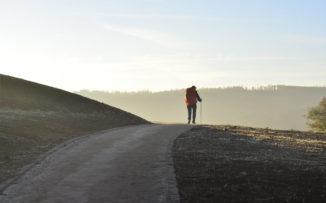 """""""La peregrinación nos permite ahondar en lo esencial de la vida"""""""