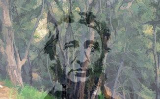 Un hombre en el bosque: el despertar de Henry David Thoreau